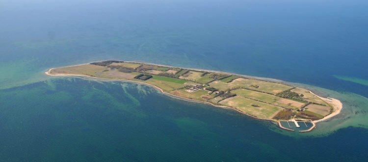 Vejrø island - Harba