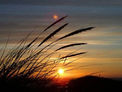 Sunset at Frederikshavn - Harba