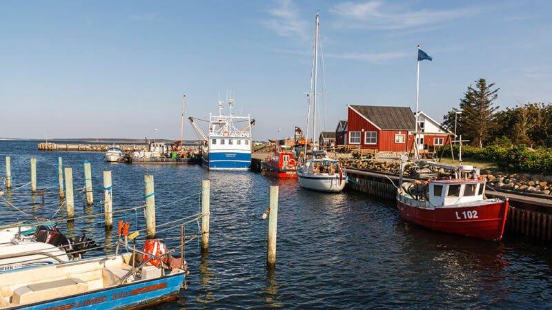 Oddesund Havn - Harba