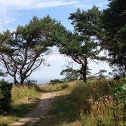 Hiking tracks near Listed Marina